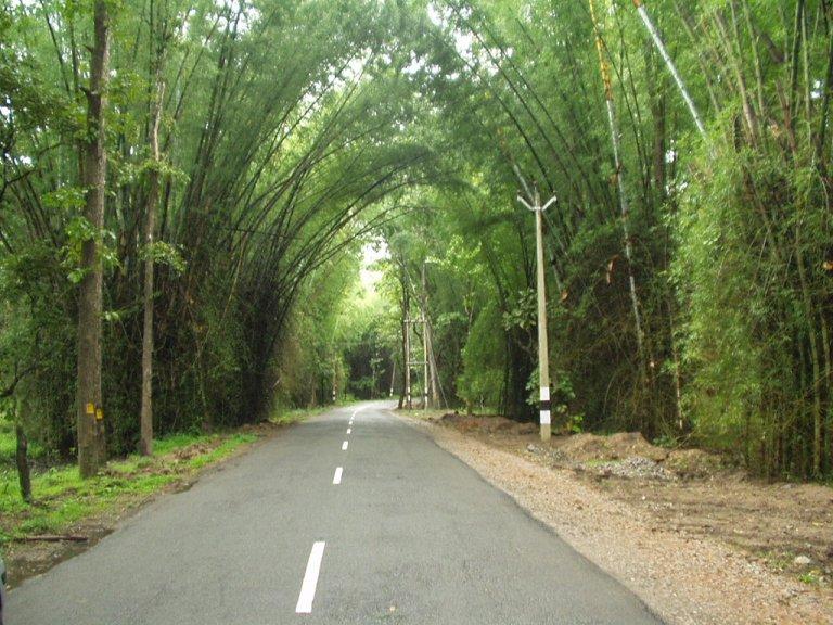 Top 5 Honeymoon Destinations In Kerala For Life Memory