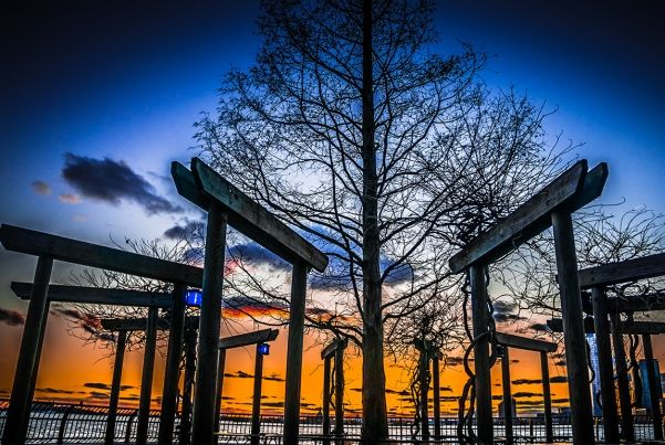 South Cove Park Sunset in NYC