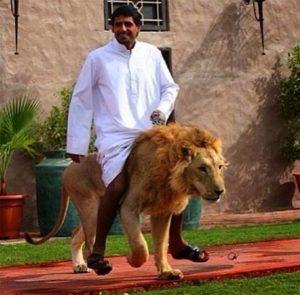 Man on Lion in Dubai