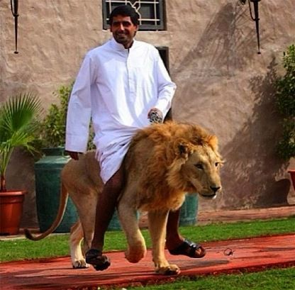 Man on Lion in Dubai