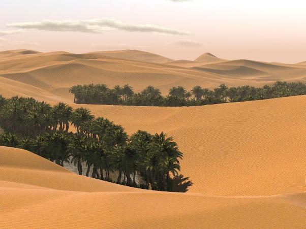 Largest Deserts In The World - Largest desert in the world
