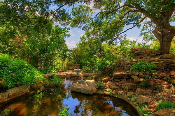 10 Must to Visit Tourist Attractions in Austin