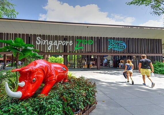 10 Tourist Attractions in Singapore You Must Visit To Complete Your Trip
