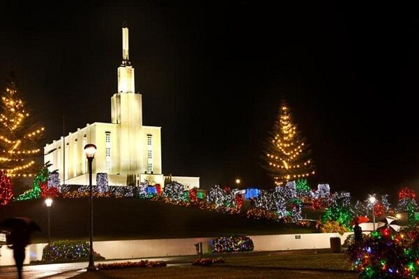Christmas Lights in Hamilton NZ