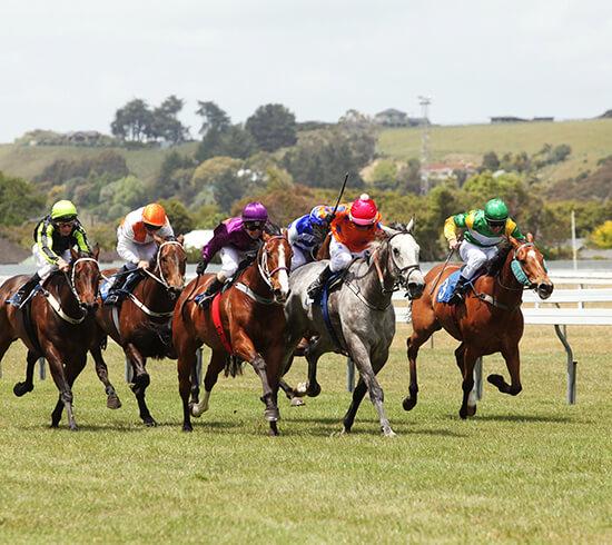 Christmas at the Races, Wanganui