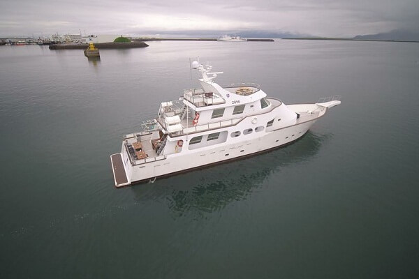 Luxury Midnight Cruise for Reykjavik New Year Fireworks