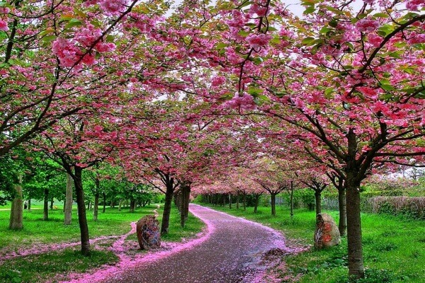 China in Spring