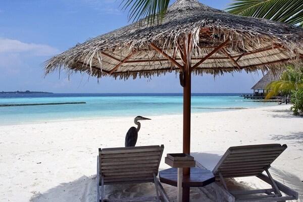 Beach Access at Gangehi Island Resort Maldives